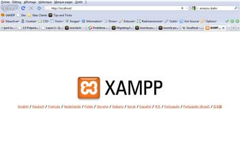 Page de lancement de XAMPP