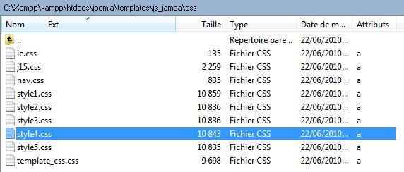 Le fichier CSS
